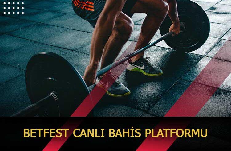 Betfest Canlı Bahis Platformu